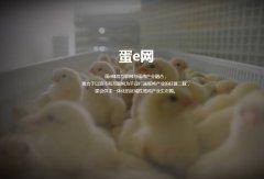 中农志远:鸡蛋B2B电商交易平台