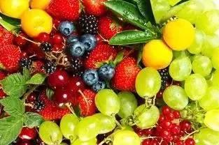 蔬菜新万博manbetx官网登录公司