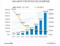 2017-2019年中国生鲜电商市场发